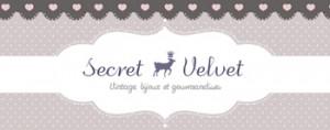 Secret Velvet Jewelry
